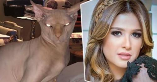 قطة ياسمين عبد العزيز المرعبة تثير الجدل على السوشيال ميديا