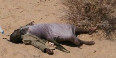 مليشيات الحوثي تترك جثث قتلاها في أحياء الحديدة (فيديو)