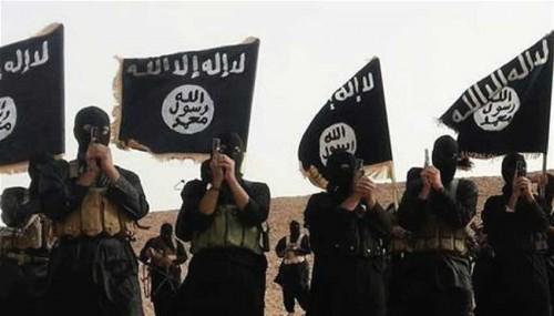 التحالف الدولي: عدد مسلحي داعش في دير الزور يبلغ 2000
