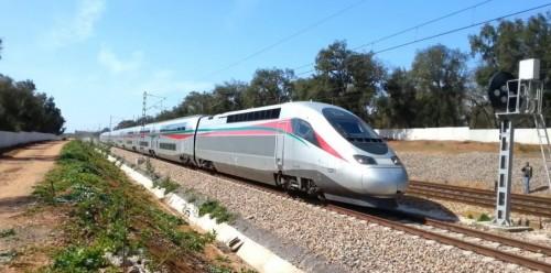 المغرب تطلق اليوم أول قطار فائق السرعة في أفريقيا