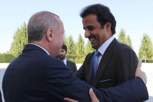 خبير لتركيا وقطر: ليس من الصعب الرد عليكم وتعريتكم
