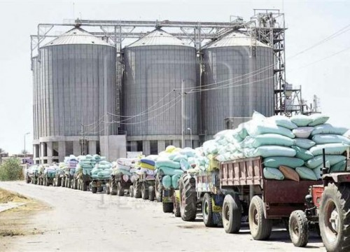 تحتوي على 5 ملايين كيس قمح.. الانقلابيون يحولون مخازن غذائية لثكنات عسكرية