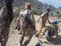 """قوات المقاومة تواصل تقدمها نحو مدينة دمت """"صور"""""""