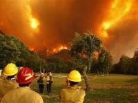 ارتفاع حصيلة قتلى حريق كاليفورنيا إلى 77 وتراجع أعداد المفقودين