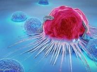 دراسة تتوصل لعلاج السرطان بفيروس معدل وراثيًا