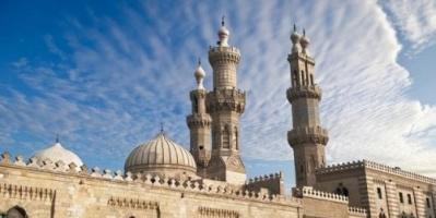 """فتوى تبيح أكل """"القطط والكلاب"""" تثير جدلاً في مصر"""