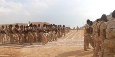 الجابري: النخبة الشبوانية قوات جنوبية وليسوا قطاع طرق