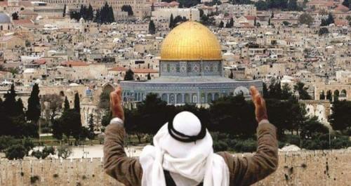سياسي: مبادرة السلام العربية الحل الأنسب للقضية الفلسطينية
