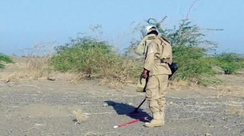 الفرق الهندسية الإماراتية تواصل نزع الألغام الحوثية بتلك المناطق