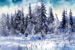 دراسة: التغيرات المناخية تقلص فصل الشتاء