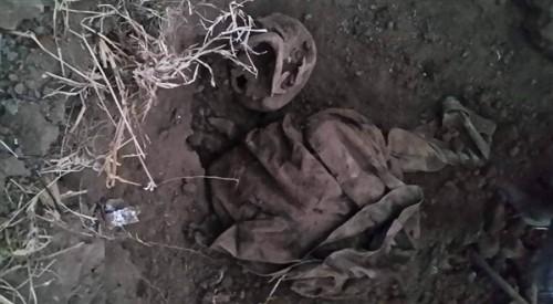 العثور على مقبرة جماعية لأفراد الجيش بتعز