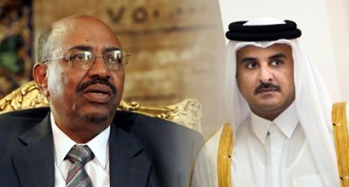 تظاهرات السودان فضحت حماية قطر للبشير (انفوجراف)