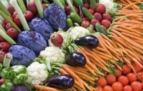 أسعار الخضروات والفواكه واللحوم في محافظة مأرب اليوم الأربعاء