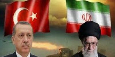 سياسي: 2019 سيشهد مفاجآت لأنظمة تركيا وإيران