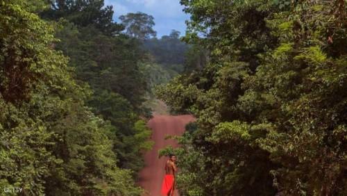 قرار برازيلي يهدد أكبر غابات العالم المطيرة