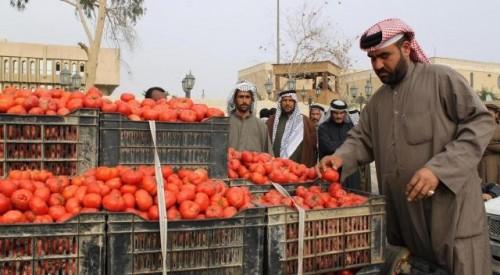 هل تقف إيران وراء وباء   الطماطم   الذي ضرب العراق؟