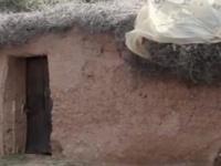 لمدة 20 عامًا والدان يحتجزا ابنتهما في إسطبل بجنوب المغرب