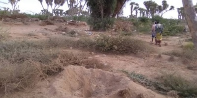 انتهاك حوثي جديد.. المليشيات تقصف المزارع ومواقع ألوية العمالقة بالحديدة