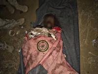 مقتل قائد القوات الخاصة لمليشيات الحوثي في الملاحيظ بصعدة ( صورة )