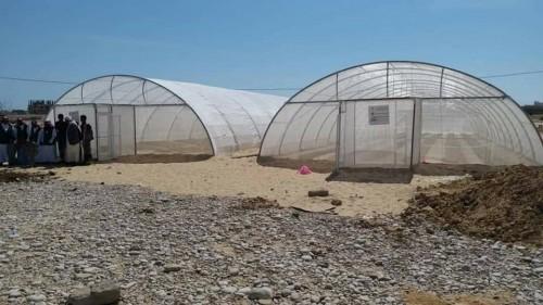 بدعم سعودي.. إطلاق مشروع البيوت الزراعية المحمية بمديرية الغيضة رسمياً