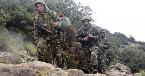 إرهابيان في قبضة السلطة الجزائرية