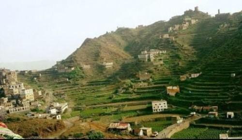 قبائل حجور تحرر مواقع هامة بحجة من سيطرة المليشيات الحوثية