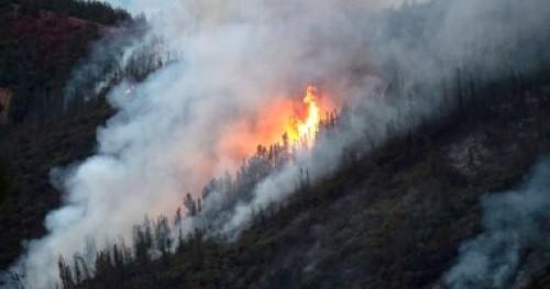 """نيوزلندا: إجلاء 700 شخص من بلدة """"ويكفيلد"""" بسبب حريق الغابات"""