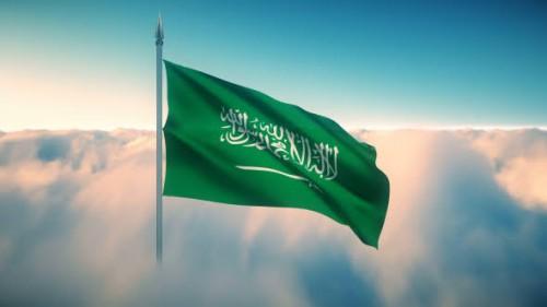 سياسي: موقف السعودية واضح من قضية فلسطين