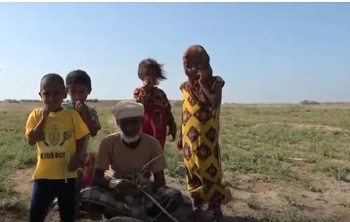 انتهاكات حوثية مروعة ضد أهالي قرية المجيلس في التحيتا.  (فيديو)