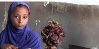 مشاهد مروعة في مديرية حيس جراء انتهاكات مليشيات الحوثي (فيديو)