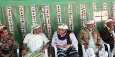 """"""" العولقي """" يستقبل الشيخ حسن بنان ومجاميع كبيرة من مشايخ وأعيان نصاب"""