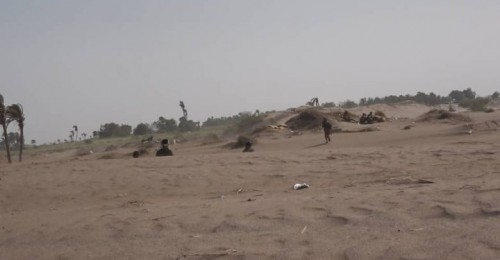 مليشيات الحوثي تستهدف مواقع العمالقة في الجبلية بالحديدة