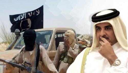 الصوماليون يتصدون لإرهاب قطر (انفوجراف)