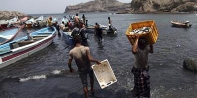 وزارة الثروة السمكية تدعم صيادي الحديدة وحجة بـ200 قارب