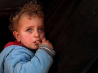 منظمة: على جميع الدول التي لديها مواطنين عالقين في سوريا تحمّل مسؤولية مواطنيها
