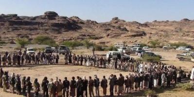 مقاومة القبائل.. رقم عسكري صعب يجهض حلم الحوثي في التمدد داخل اليمن