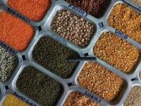 دراسة: تناول الحبوب الكاملة تقي من الإصابة بسرطان الكبد