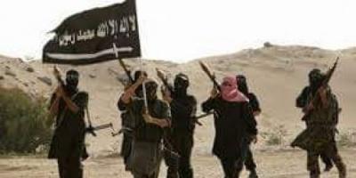 السلاح والإفراجات يكشفان التعاون الخفي ما بين الحوثي والقاعدة في اليمن