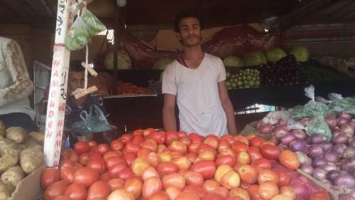 ارتفاع جنوني في أسعار الطماطم بسوق الحبيلين بردفان