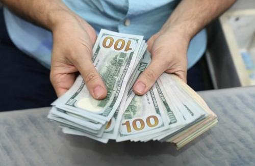 تعرف على سعر الدولار في ظل استقراره في المنحنى المنخفض