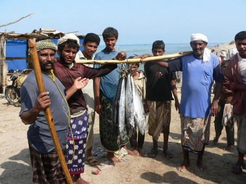 دعم الإمارات يساهم في عودة وزيادة الإنتاج السمكي بالحديدة (فيديو)
