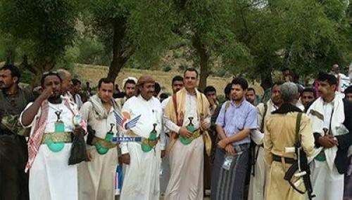 إسماعيل: همجية الحوثي وخذلان الشرعية تقتل حجور