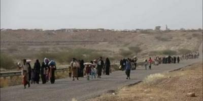 جرائم الحوثي في حجور: مأساة إنسانية جديدة في اليمن