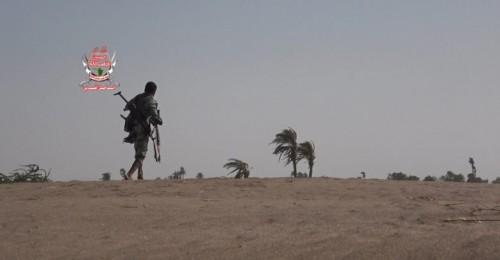 استشهاد أحد جنود العمالقة وجرح آخرين بقصف حوثي في الجبلية بالحديدة