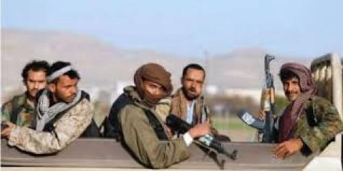 مصادر محلية: الحوثي يحشد قواته للاتجاه نحو مديرية حيران