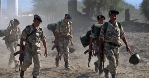 الجزائر.. عناصر عسكرية تمشط شمال البلاد