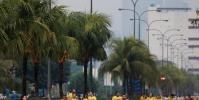 سباق جري للكلاب وأصحابها في الفلبين (صور)