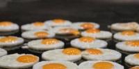دراسة.. تحذرمن الإفراط في تناول البيض