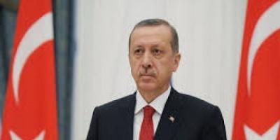 سياسي: أردوغان يسيطر على ثروات الشعب القطري بتلك الحيلة
