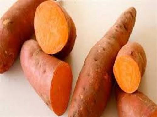 دراسة أمريكية حديثة : البطاطا تساعد على تنظيم نسبة السكر في الدم